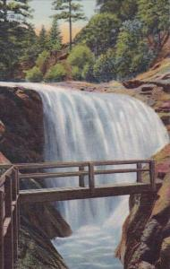 Colorado Colorado Springs Ramona First Of The Seven Falls South Cheyenne Canon