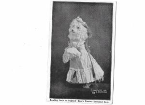 Leading Lady Victorian Dog 1907 Dogland Linn's Famous Educated Dogs