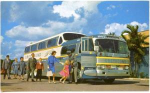 Greyhound Bus 43 Passenger The Super Sceinicruiser Postcard