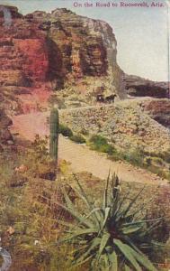 Arizona Desert Scene On The Road To Roosevelt