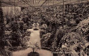 Lisboa Portugal view of Eduardo VII Park greenhouse antique pc Z29970