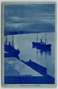Galveston Texas~Steamers in Bay by Moonlight~Dock & Wharf~1910 Blue Gray Tint PC