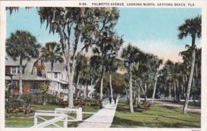 Florida Daytona Palmetto Avenue Street Scene Looking North 1928 Curteich