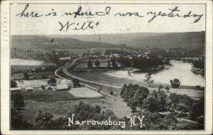 Narrowsburg NY Birdseye View c1906 Postcard
