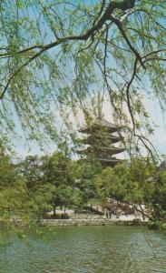 Sarusawa Pond Nara Pagoda Japan Japanese Postcard