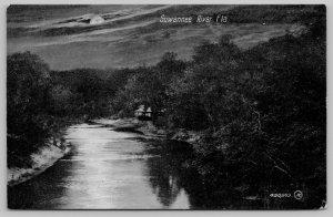 Moonlight Peaks Thru Clouds Above Suwannee River FL~Home Hestled on Shore c1910