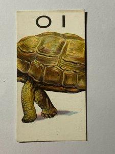 CIGARETTE CARD - WILLS ANIMALLOYS #38 OI   (UU155)