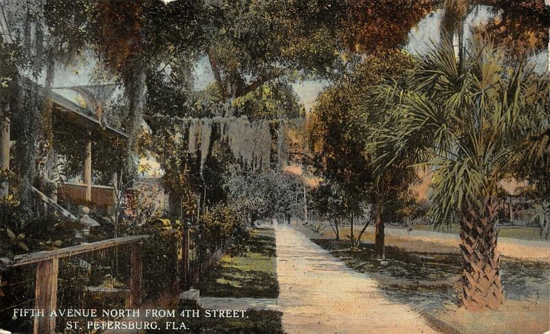 St Petersburg Florida~Fifth Avenue North From 4th Street~Homes~Spanish Moss~1908
