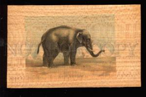 029676 Big ELEPHANT. Sign. Vintage WOODEN RARE PC