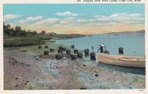 CAPE COD, Massachusetts, 1930-1940s; Digging Little Neck Clams