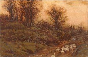 Sunset Flories. Ducks Tuck Art Series PC # 1601