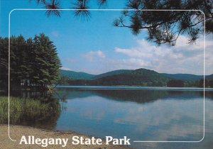Red House Lake Alleghany State Park New York