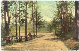 Scene in Roscoe Conkling Park, Utica, New York, 1900-10s