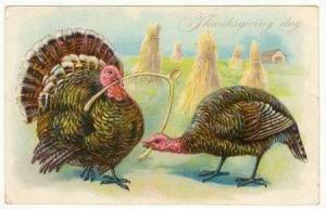 Two Turkeys Pull At Wishbone, Thanksgiving, 1908