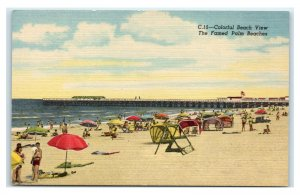 Postcard Colorful Beach View the Famed Palm Beaches FL I50