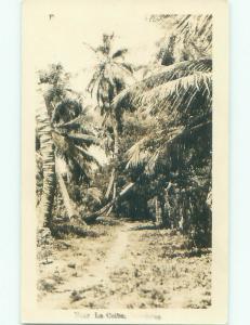 Pre-1949 rppc NICE VIEW La Ceiba Honduras i3864
