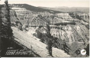 Sunset Point Cedar Breaks Cedar City Utah Black & White Real Photograph Postcard