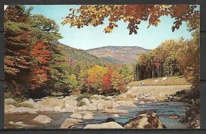 Maine, Portage Lake - Greetings - Fall Beauty - [ME-086]