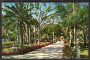 Azaleas,Ringling Residence,Sarasota,FL
