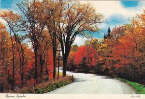 Canada Autumn Splendor Greetings From Fredericton New Brunswick