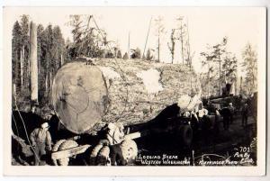 RPPC, Loging Scene, Western \ WA