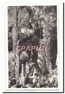 Aven dOrgnac Postcard Old giant stalagmites (h 17m)