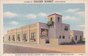 Florida St Petersburg Golden Sunset Citrus Packing Plant