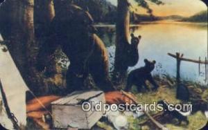 New York State, USA Bear Postcard Bear Post Card Old Vintage Antique  New Yor...