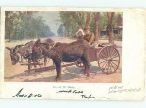 1906 CART BEING PULLED BY ANIMALS AC4271
