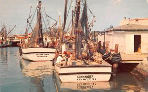 Florida - Shrimp Boats