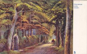 JERSEY, England, 1900-1910's; Vinchellez Lane