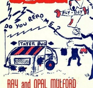 Vintage QSL Postcard  KRN 8477  Letart, West Virginia  Ray & Opal Mulford  -T-