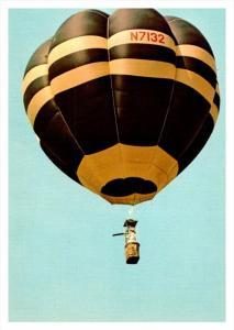 11529   Hot Air Ballon  Bumble Bee