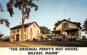 PERRY'S TROPICAL NUT HOUSE Belfast, Maine Roadside 1968 Vintage Postcard