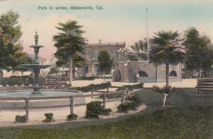 WATSONVILLE , California , 00-10s ; Park In Winter