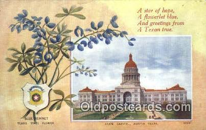 Austin, Texas, TX State Capital, Capitals Postcard Post Card USA  Austin, Tex...