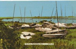 Essex Postcard - The River - Maylandsea - Ref 18536A