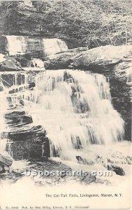Cat Tail Falls - Livingston Manor, New York