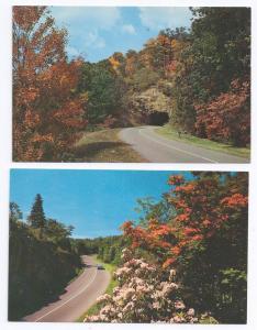 NC Blue Ridge Parkway Views Tanbark Tunnel (2 cards)