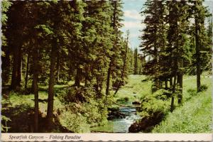 Spearfish Canyon Black Hills SD South Dakota c1976 Vintage Postcard D55