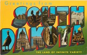 South Dakota~State Large Letter CHROME Postcard~Pheasant~Dinosaur~Rushmore~1963