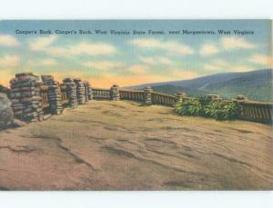 Unused W-Border COOPERS ROCK AT STATE FOREST Morgantown West Virginia WV E8104