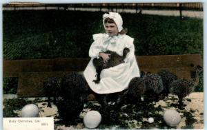 PASADENA, California  CA   Little Girl with BABY OSTRICHES 1908 PCK Postcard