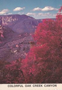 Arizona Fall Scene At Oak Creek Canyon 1992