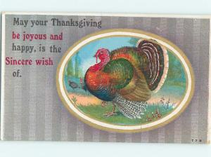 Pre-Linen thanksgiving COLORFUL TURKEY BIRD IN A CIRCLE HQ7484