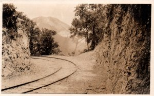Train Tracks BIN