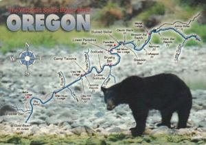 Oregon Map Of Wild and Scenic Rogue River With Bear