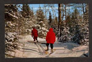 MI Greetings from REED CITY MICHIGAN Postcard Snowshoes