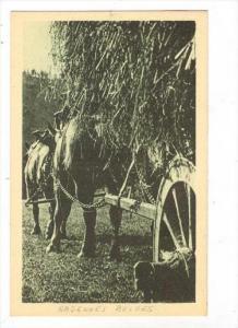 Ardennes-Belges-La montee sera rude, 1910-30s