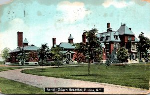 New York Elmira Arnot Ogden Hospital 1909